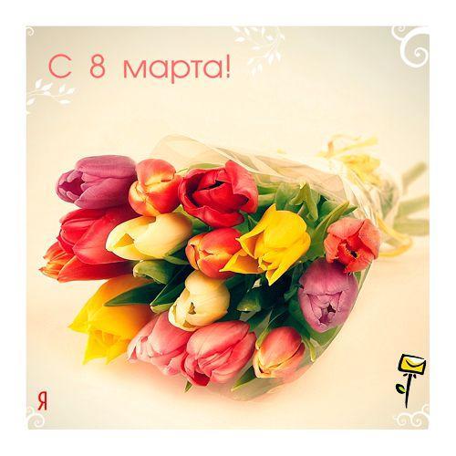 Всех посетителей темки поздравляю с Днём 8 Марта! http//poodles.name