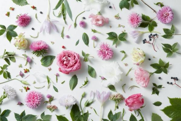 Какие цветы подарить девушке на 30 лет