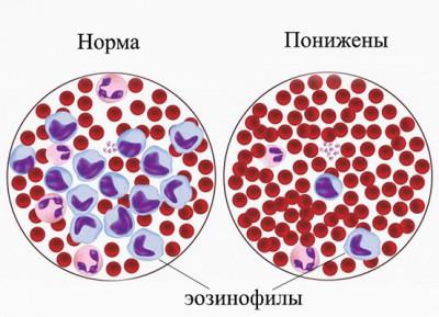 Особенности проведения анализа крови