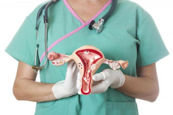 Гинекология в Лобне: консультация, диагностика