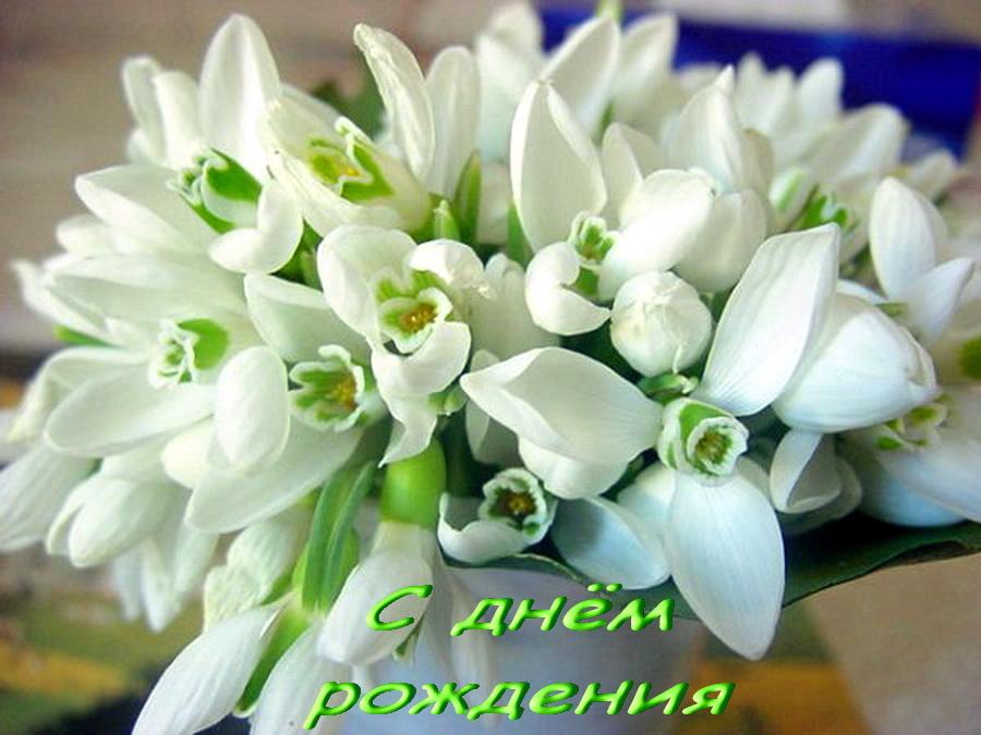 Юлич, поздравляю с днём рождения!