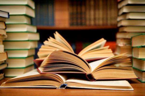 Общероссийский народный фронт озаботился объёмом школьной литературы для чтения