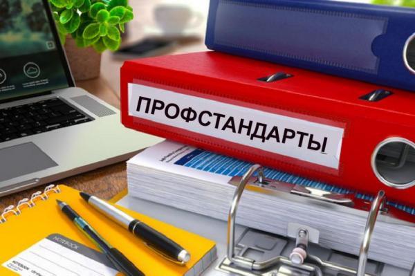 Новый профстандарт для российских учителей окончательно введут в 2019 году