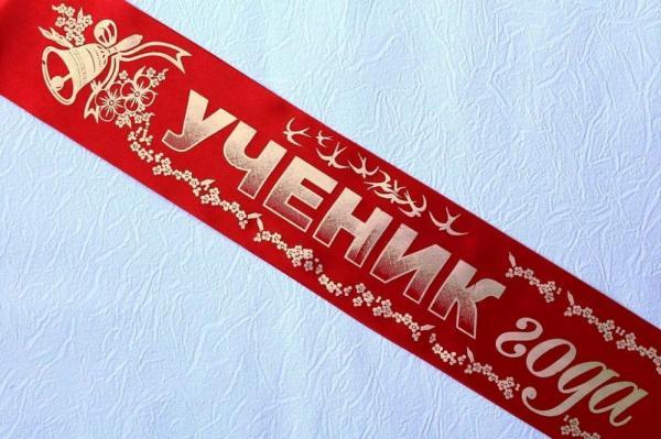 В России может появиться конкурс «Ученик года»